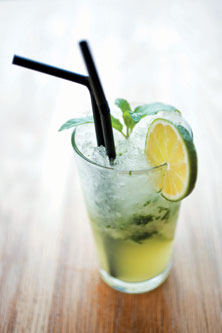 Virgin Mojito : A Refreshing Drink « Nidhi Saxena's blog about ...