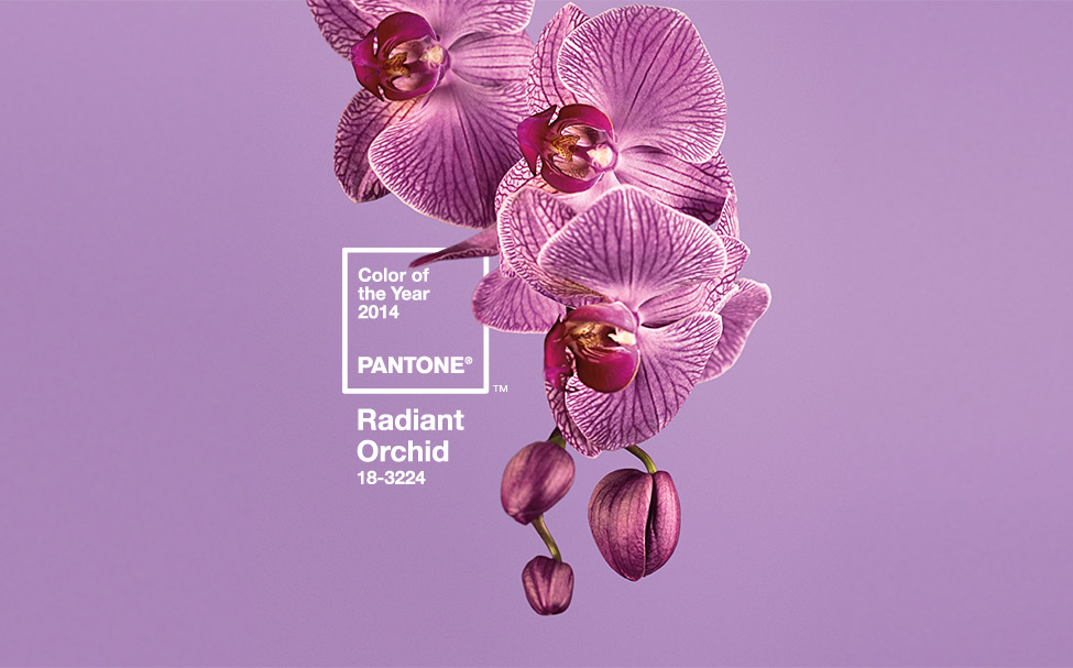 Pantone Color of the Year 2014: RADIANT ORCHID (Pantone 18-3224)